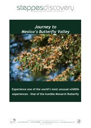 valley of the monarch butterfly - Steppes Discovery