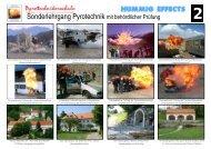 Anmeldung zum Sonderlehrgang Pyrotechnik - Pyrotechnikerschule ...