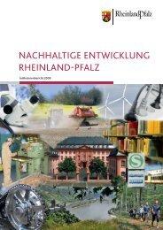Indikatorenbericht 2009 - Ministerium für Wirtschaft, Klimaschutz ...