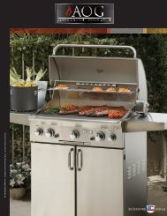 American Outdoor Grill Brochure - All Valley BBQ, Spa & Fireplace