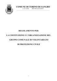 regolamento volontariato protezione civile - Comune di Torino di ...