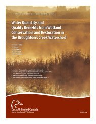 Water Quantity and Quality Benefits from Wetland Conservation and ...