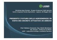 Ing. Giulio Bortoluzzi - LEAP - Politecnico di Milano