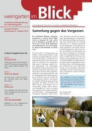 Ausgabe 25/2013 - Weingarten im Blick