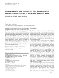 Construction of a laser combiner for dual fluorescent single ...