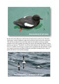 Seabirds-and-Cetaceans-Brochure - Page 3