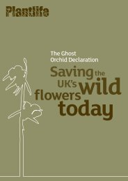 Ghost Orchid Declaration - Plantlife