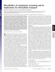 Microfluidics of cytoplasmic streaming and its implications for ...