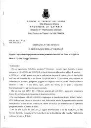 Ordinanza - Ingiunzione di pagamento ditta Scroppo Salvatrice