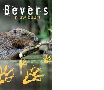 Brochure 'Bevers in uw buurt' - De Zoogdiervereniging