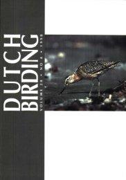 1998-4 - Dutch Birding