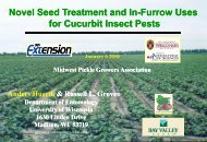 Novel seed treatment and in-furrow uses for cucurbit insect pests