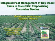 Integrated Pest Management of Key Insect Pests in Cucurbits ...