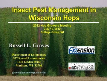 Insect Pest Management in Wisconsin Hops