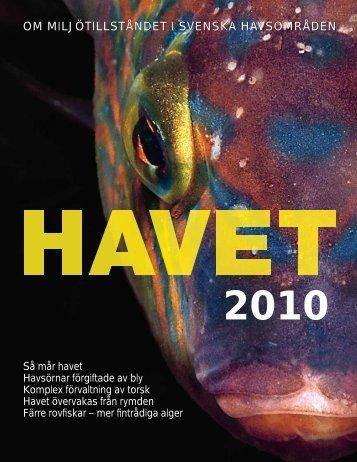 Så mår havet 2010 (PDF) - Havet.nu
