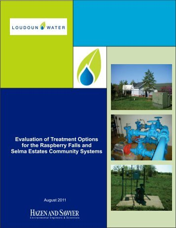 Evaluation of Treatment Options for the Raspberry ... - Loudoun Water