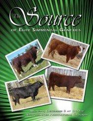 SAJ Simmentals - Bouchard Livestock International