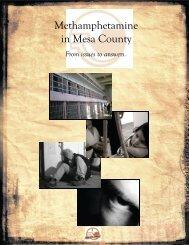 Methamphetamine in Mesa County - Meth Task Force - Meth-Free ...