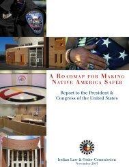 A Roadmap For Making Native America Safer - UCLA American ...
