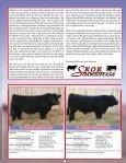 SKOR Simmentals - Transcon Livestock Corporation - Page 3
