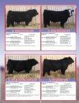 SKOR Simmentals - Transcon Livestock Corporation - Page 4