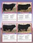 SKOR Simmentals - Transcon Livestock Corporation - Page 5