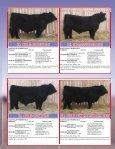 SKOR Simmentals - Transcon Livestock Corporation - Page 7
