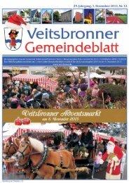 09. Dezember 2013 - Veitsbronn