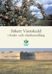 Säkert Växtskydd i frukt- och växthusodling