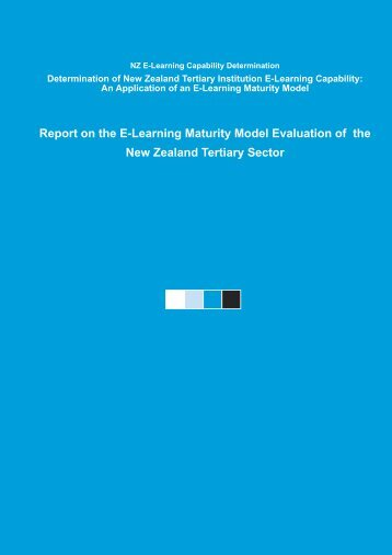 20050624 Sector Report.indd - Centre for Academic Development ...