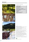 Der Dachsteiner 2012 - Ramsau am Dachstein - Seite 6