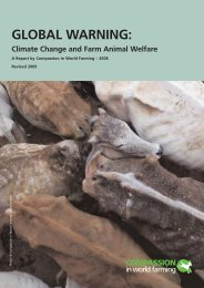 Global Warning: Climate change and farm animal welfare