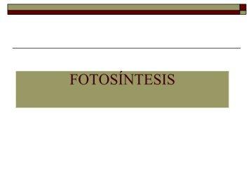 III.Rutas Met4.-Fotosíntesis.pdf - biblioteca upibi