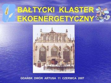 BKEE, Prof. Jan Kiciński, IMP PAN - Instytut Maszyn Przepływowych ...