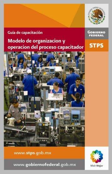 5. Modelo de organización y operación del proceso capacitador.
