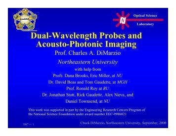 Dual-Wavelength Probes and Acousto-Photonic Imaging