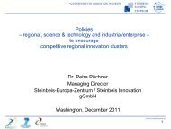 Policies that Encourage a Competitive Regional Innovation Cluster