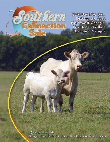 Southern Connection - American International Charolais Association