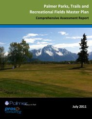 Comprehensive Assessment Report - City of Palmer, Alaska