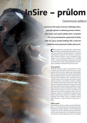 10/2008 - CRV CZ