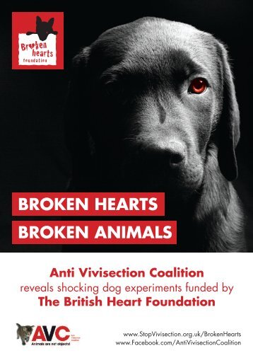 broken-hearts-foundation