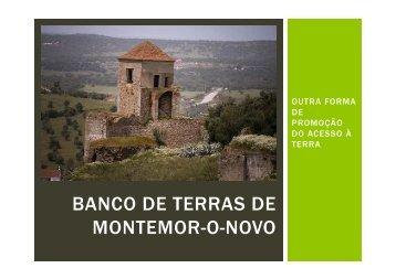 Banco de terras de Montemor-o-novo - Ana Fonseca - icaam