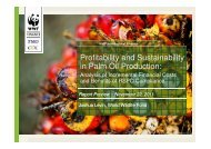 Profitability and Sustainability in Palm Oil Production: - RT9 2011