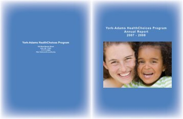 2007-2008 Annual Report - York County