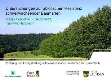 Untersuchungen zur abiotischen Resistenz ... - FastWOOD