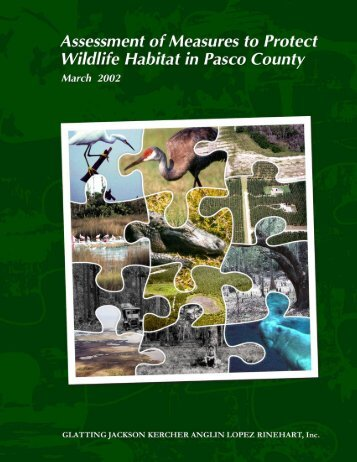 Assessment of Measures to Protect Wildlife ... - Hernando County