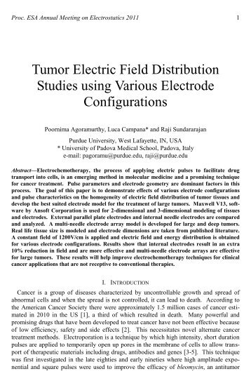 Tumor Electric Field Distribution Studies using Various Electrode ...