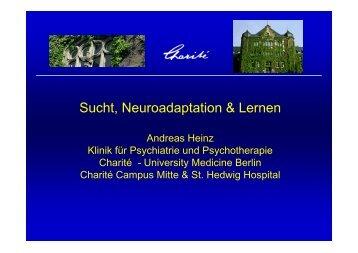 Sucht, Neuroadaptation & Lernen - DG-Sucht