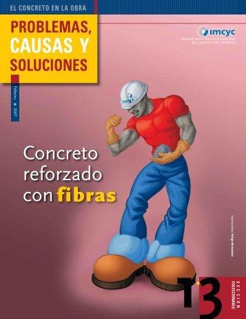 Concreto reforzado con CAUSAS Y fibras - Instituto Mexicano del ...
