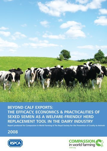 beyond calf exports - Compassion in World Farming